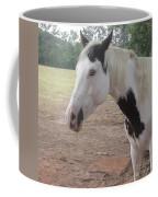 Medicine Hat Horse Coffee Mug