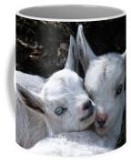 Blue-eyed Twins Coffee Mug
