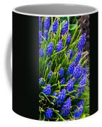 Blue Grape Hyacinth Coffee Mug