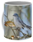 Blue-gray Gnatcatcher Coffee Mug