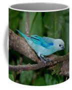 Blue-gray Tanager Coffee Mug