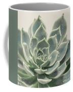 Blue Green Succulent Coffee Mug