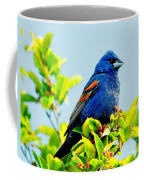 Blue Grosbeak On The Look Out Coffee Mug