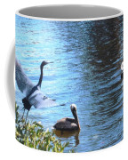 Blue Heron And Pelicans Coffee Mug