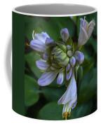 Blue Hosta Coffee Mug