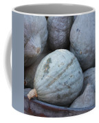 Blue Hubbard Squash Coffee Mug