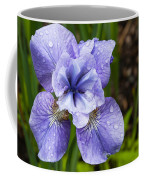 Blue Iris Flower Raindrops Garden Virginia Coffee Mug