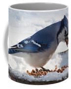Blue Jay Chow-down Coffee Mug