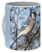 Blue Jay.. Coffee Mug