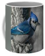 Blue Jay Painterly Coffee Mug