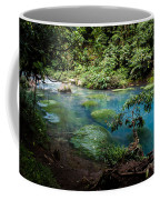 Blue Lagoon Coffee Mug
