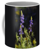 Blue Lupine  Coffee Mug