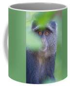 Blue Monkey Cercopithecus Mitis, Lake Coffee Mug