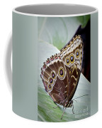 Blue Morpho Butterfly Costa Rica Coffee Mug