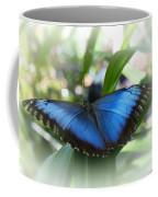 Blue Morpho Butterfly Dsc00575 Coffee Mug