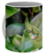 Blue Orbweaver Coffee Mug