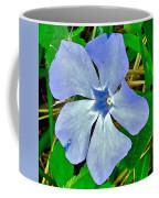 Blue Periwinkle In Rocca Al Mare Open Air Museum-estonia Coffee Mug