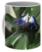 Blue-spotted Charaxes Butterfly #2 Coffee Mug