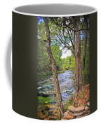 Blue Spring Branch 2 Coffee Mug