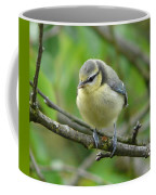 Blue Tit In A Cherry Tree Coffee Mug