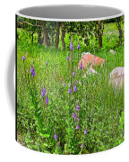 Blue Vervain And Rocks In Pipestone National Monument-minnesota  Coffee Mug