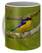 Blue-winged Mountain Tanager Coffee Mug