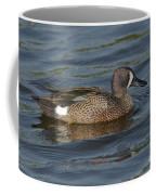 Blue-winged Teal Coffee Mug
