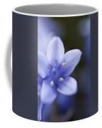 Bluebells 4 Coffee Mug