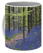 Bluebells In Beech Forest Coffee Mug