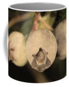 Blueberries On Bush Sepia Tone Coffee Mug