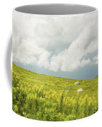 Blueberry Field And Goldenrod With Dramatic Sky In Maine Coffee Mug by Keith Webber Jr