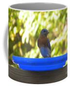 Bluebird Frisbee Coffee Mug