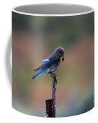 Bluebird Lunch Coffee Mug
