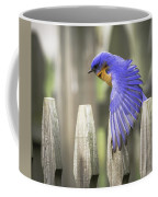 Bluebird On The Fence Coffee Mug