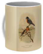 Bluebirds Coffee Mug