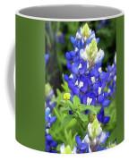 Bluebonnets Blooming Coffee Mug
