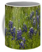 Bluebonnets In The Grass Coffee Mug