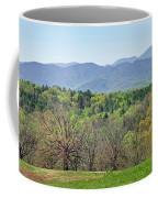 Blueridge Mountains In The Spring Coffee Mug