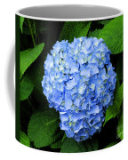Blues Hues Coffee Mug