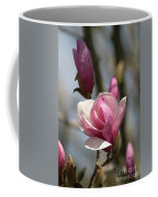 Blushing Magnolia Coffee Mug