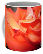 Blushing Orange Rose 6 Coffee Mug