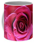 Blushing Pink Rose 3 Coffee Mug