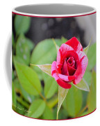 Blushing Rose Coffee Mug