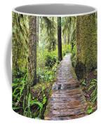 Boardwalk On The Rainforest Trail In Coffee Mug
