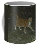Bob-tail Cat Coffee Mug