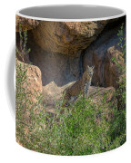 Bobcat Point Coffee Mug