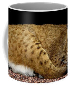 Bobcat Coffee Mug by Rose Santuci-Sofranko