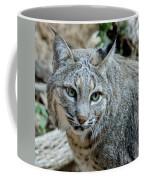 Bobcat's Gaze Coffee Mug