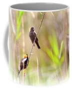 Bobolink - 6 Coffee Mug