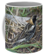 Bobolink Feeding Coffee Mug